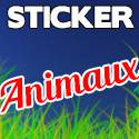 stickers voiture animaux